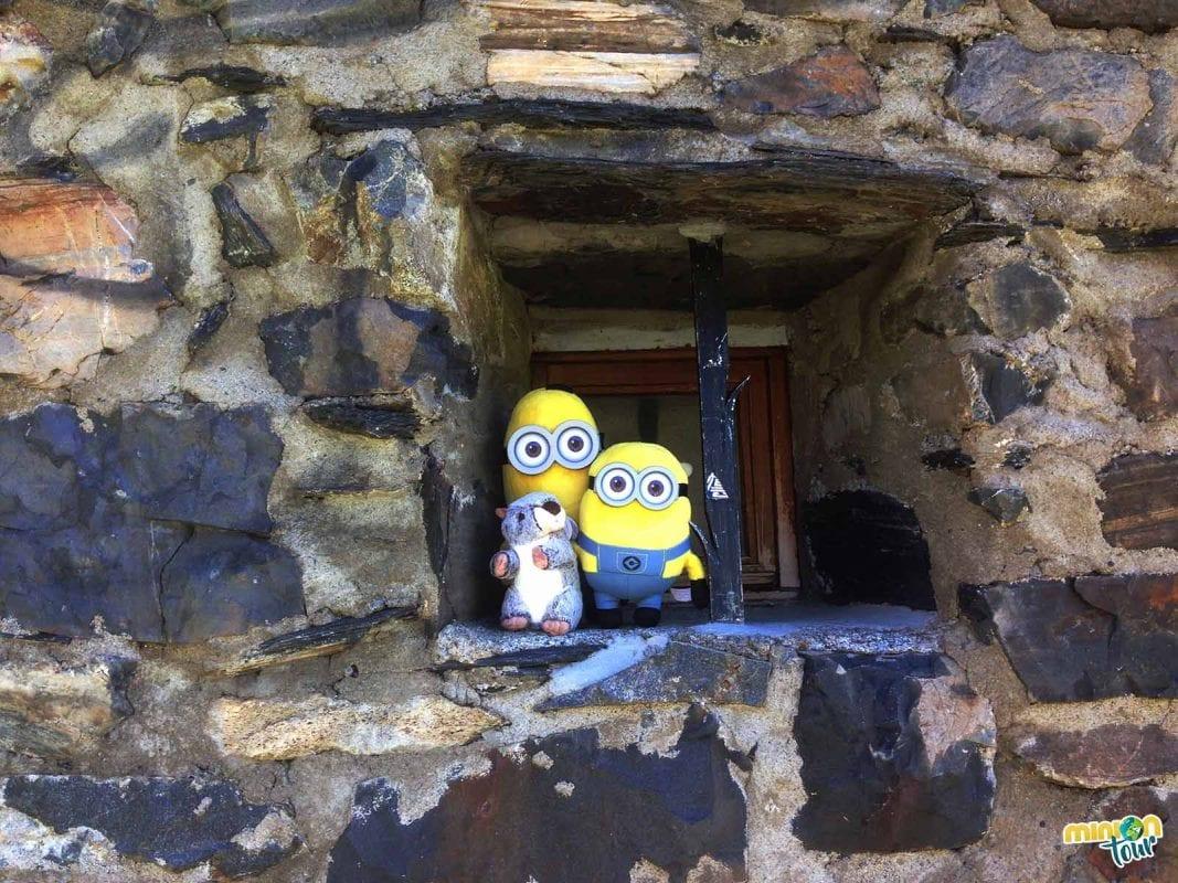 Los Minions con su nueva compañera de aventuras