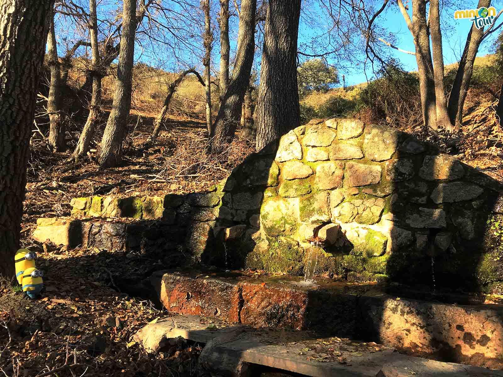 La Fuente de los Tres Caños en Monfragüe