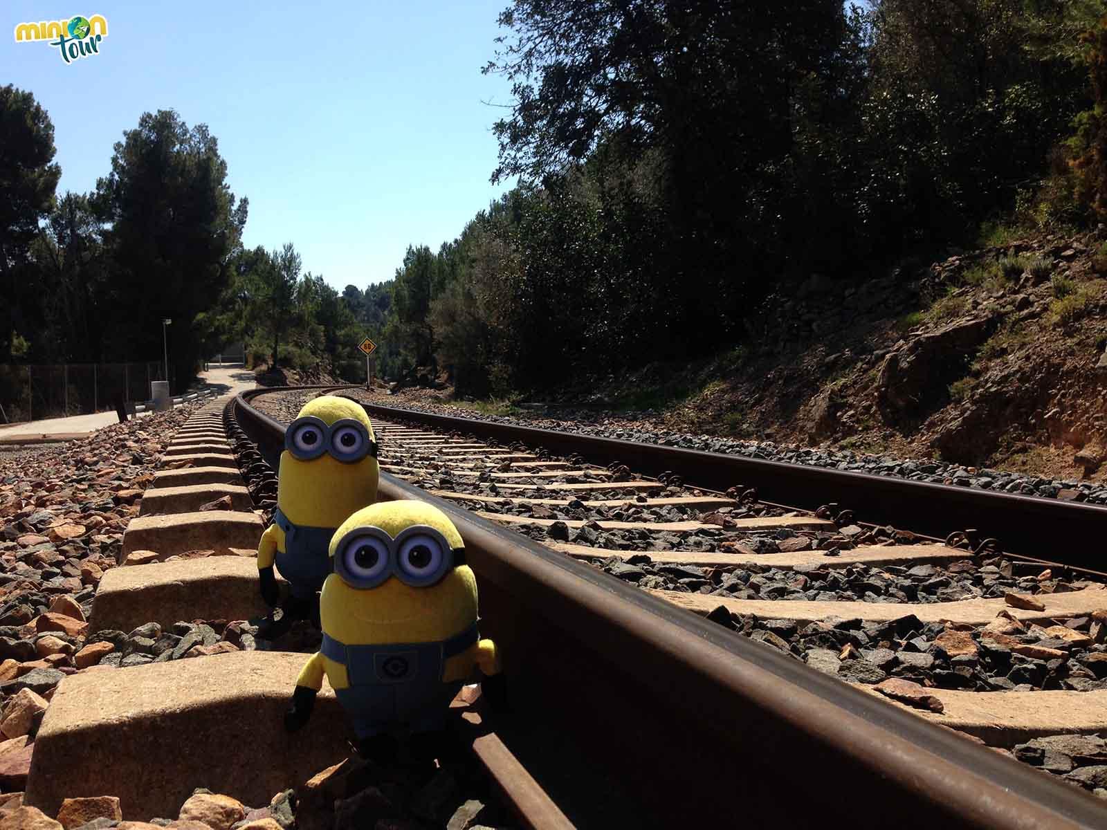 Durante nuestra ruta al Salto de la Novia nos encontramos con una vía del tren