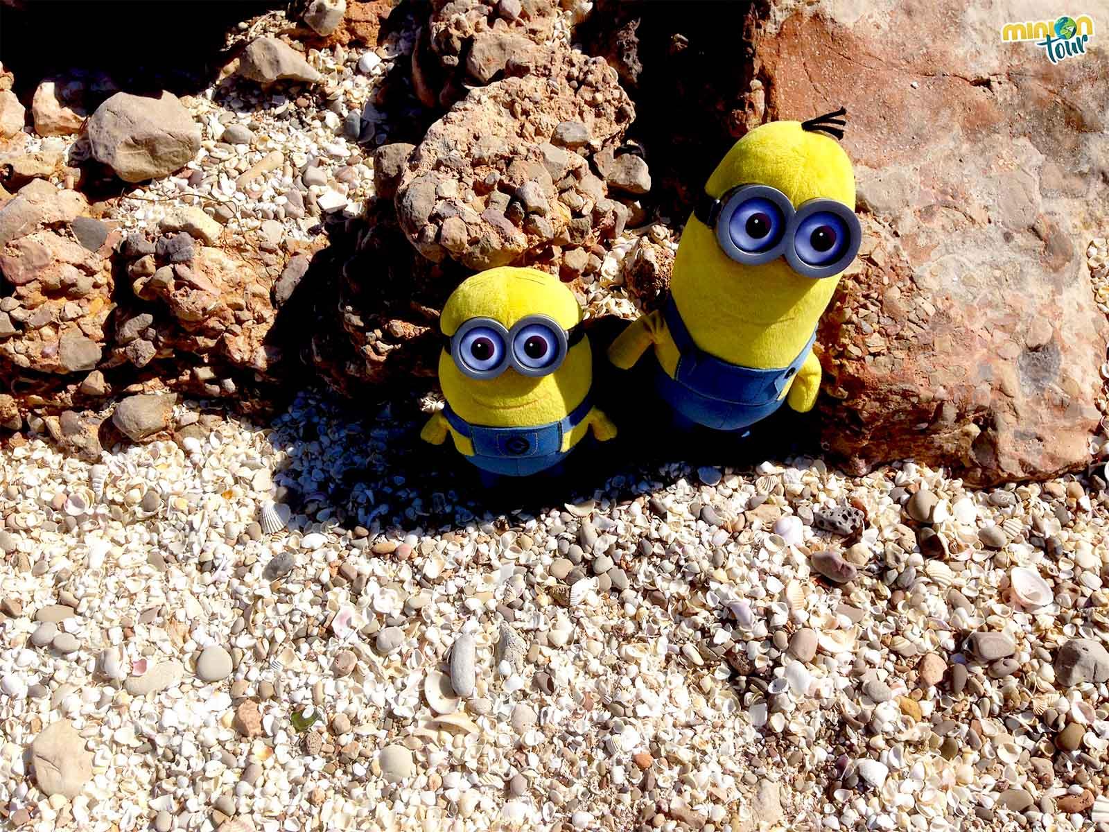 2 Minions rodeados de conchas