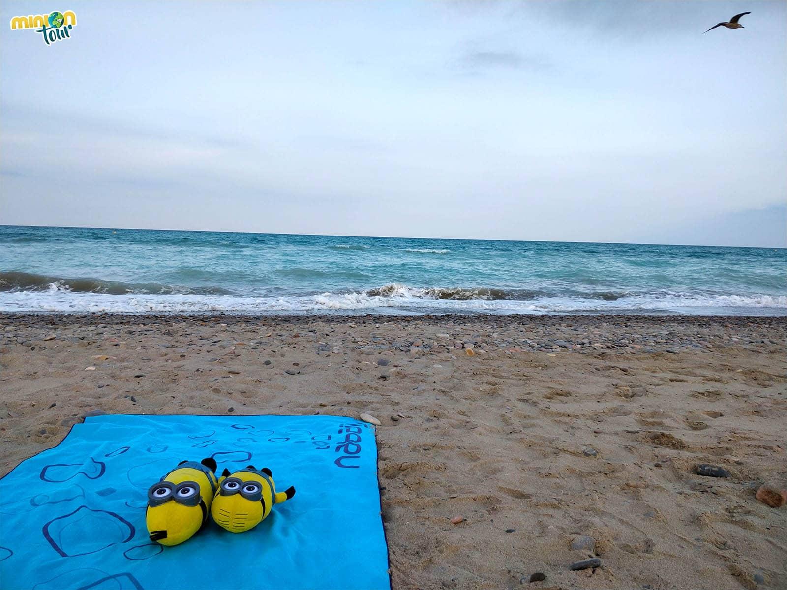 2 Minions tomando el sol en la Playa Almardà, muy cerca de Canet de Berenguer