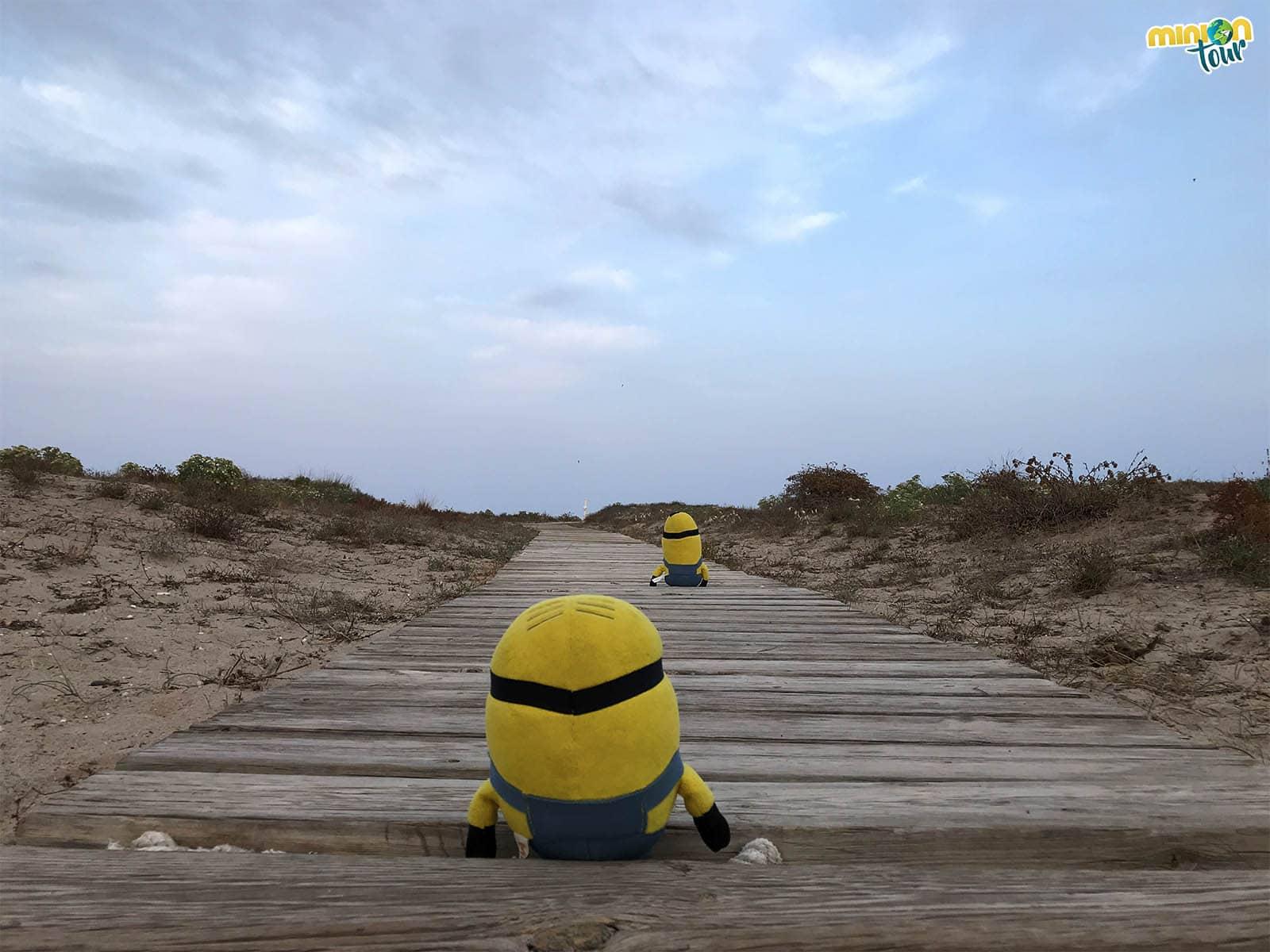 Pasarela de camino a la Playa Almardà de Canet de Berenguer