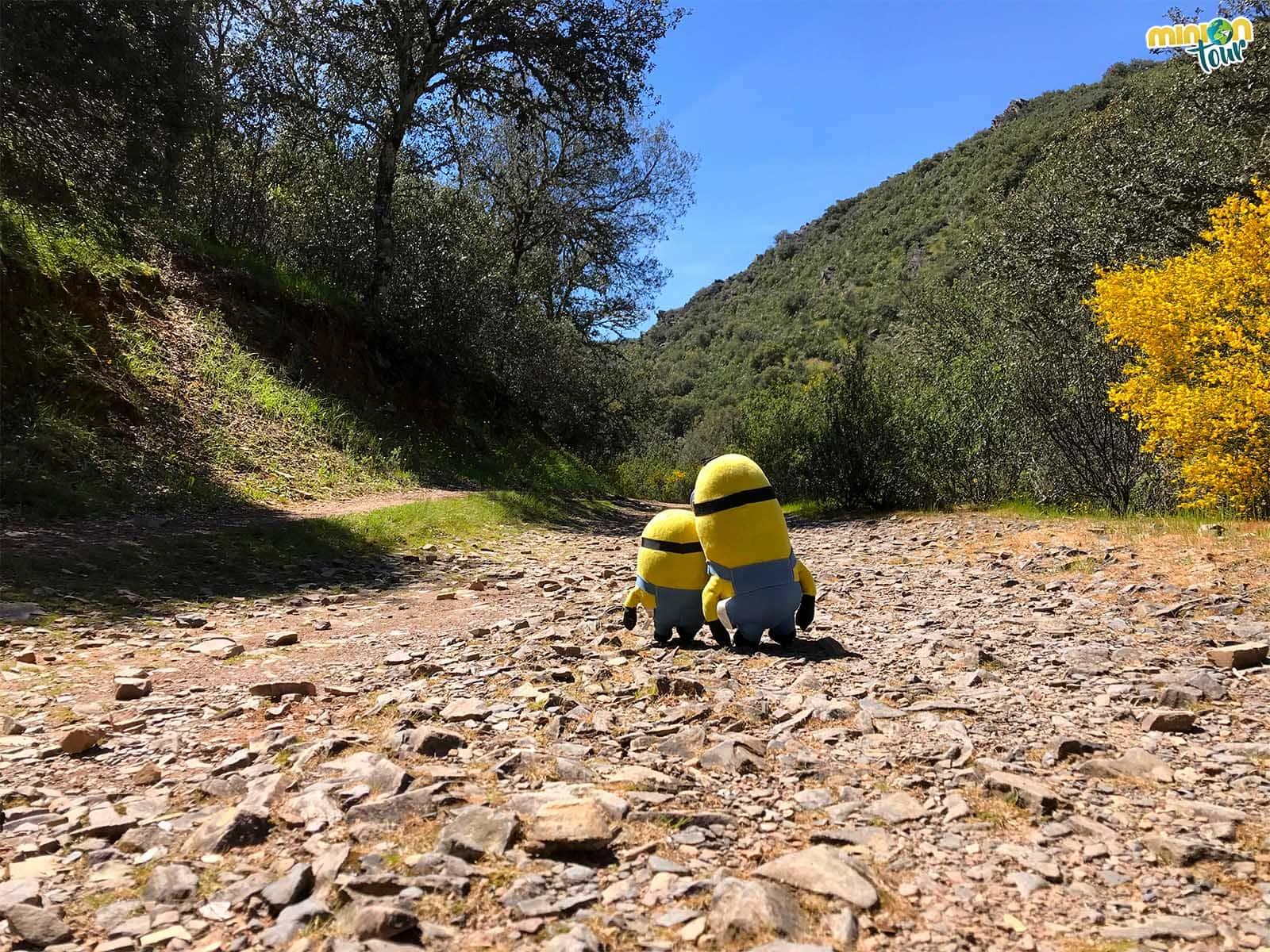 2 Minions comenzando la ruta del Boquerón del Estena