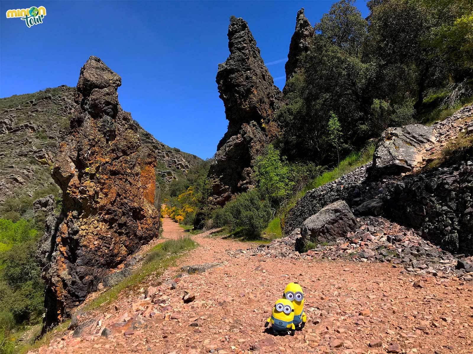 Buscando fósiles en el Boquerón del Estena