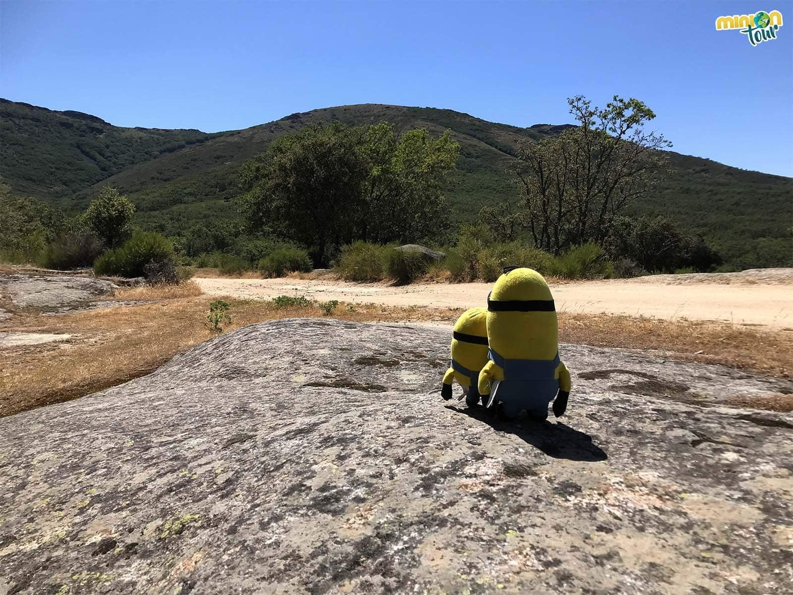Buscando la tumba del peregrino en la ruta Secretos de Bosques y Cañadas en San Pablo de los Montes