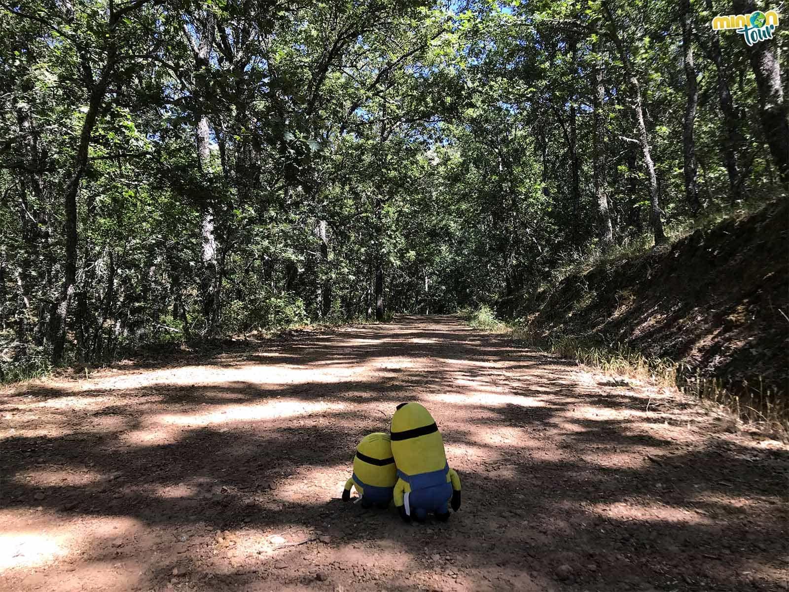 Seguimos la ruta cerca de San Pablo de los Montes