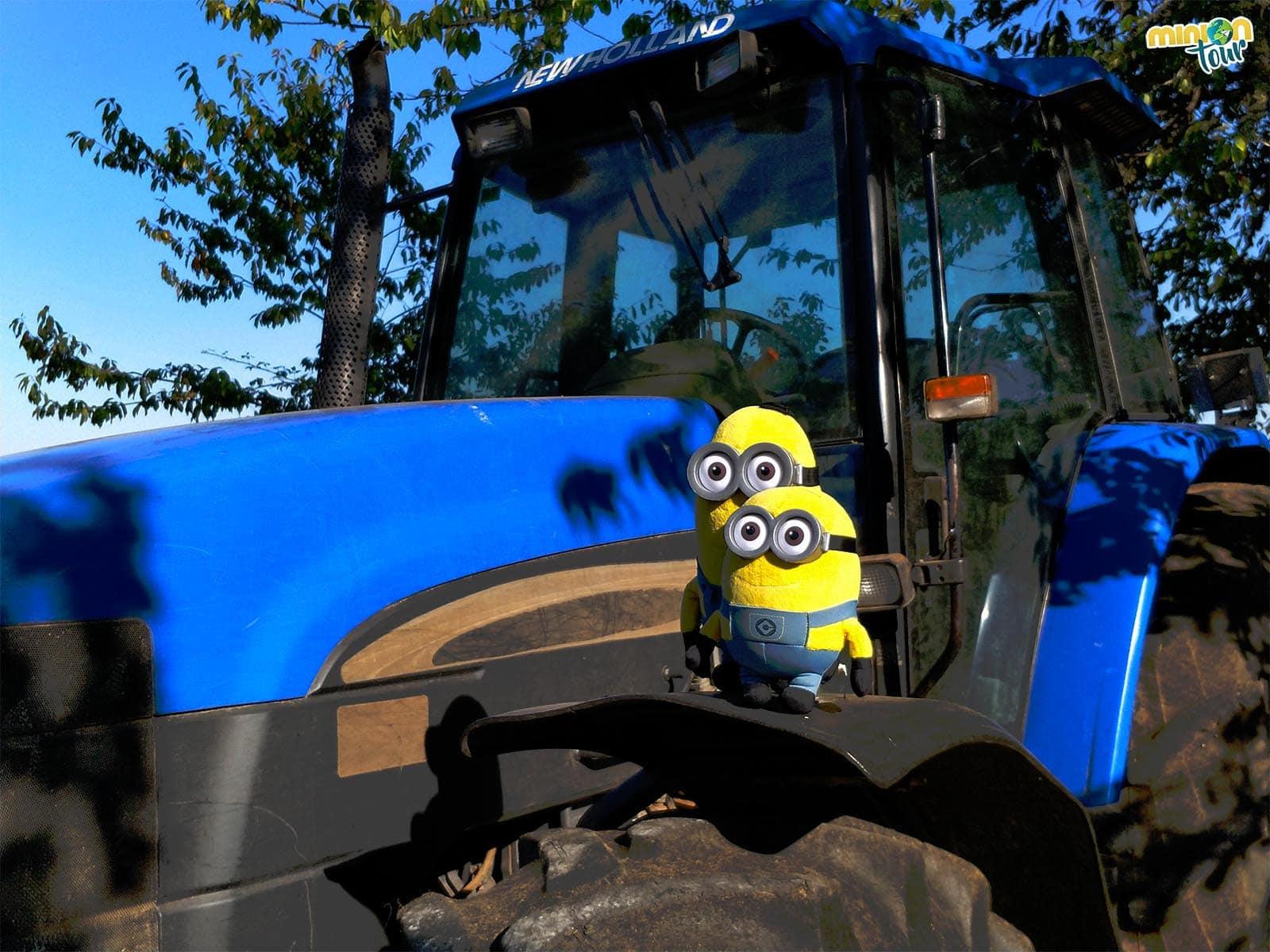 2 Minions en un tractor
