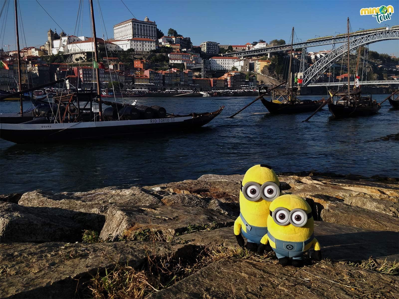 2 Minions recién llegados a Oporto