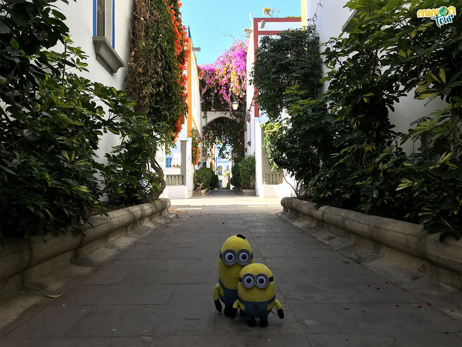 Puerto de Mogán y sus calles llenas de flores