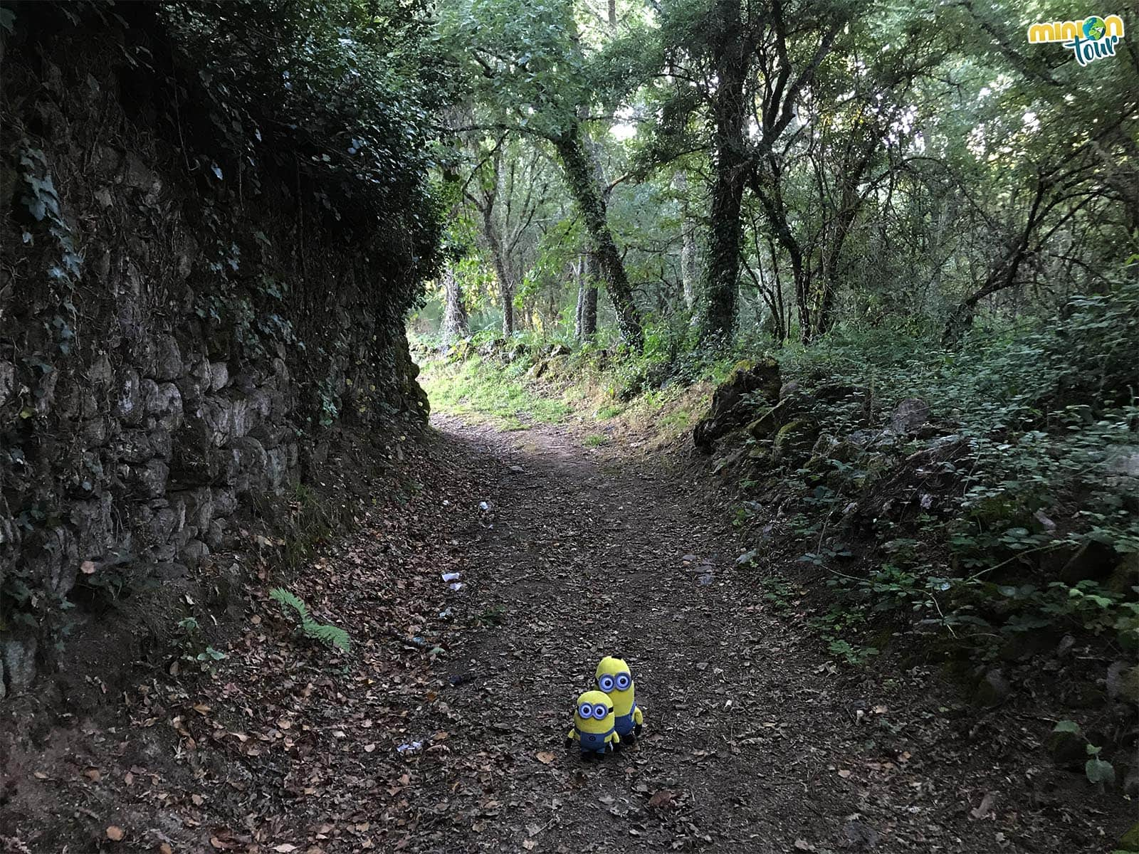 Otro rincón del sendero
