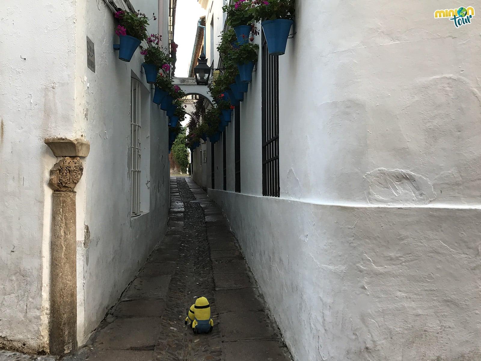 En Córdoba tienes que ver la Calleja de las Flores