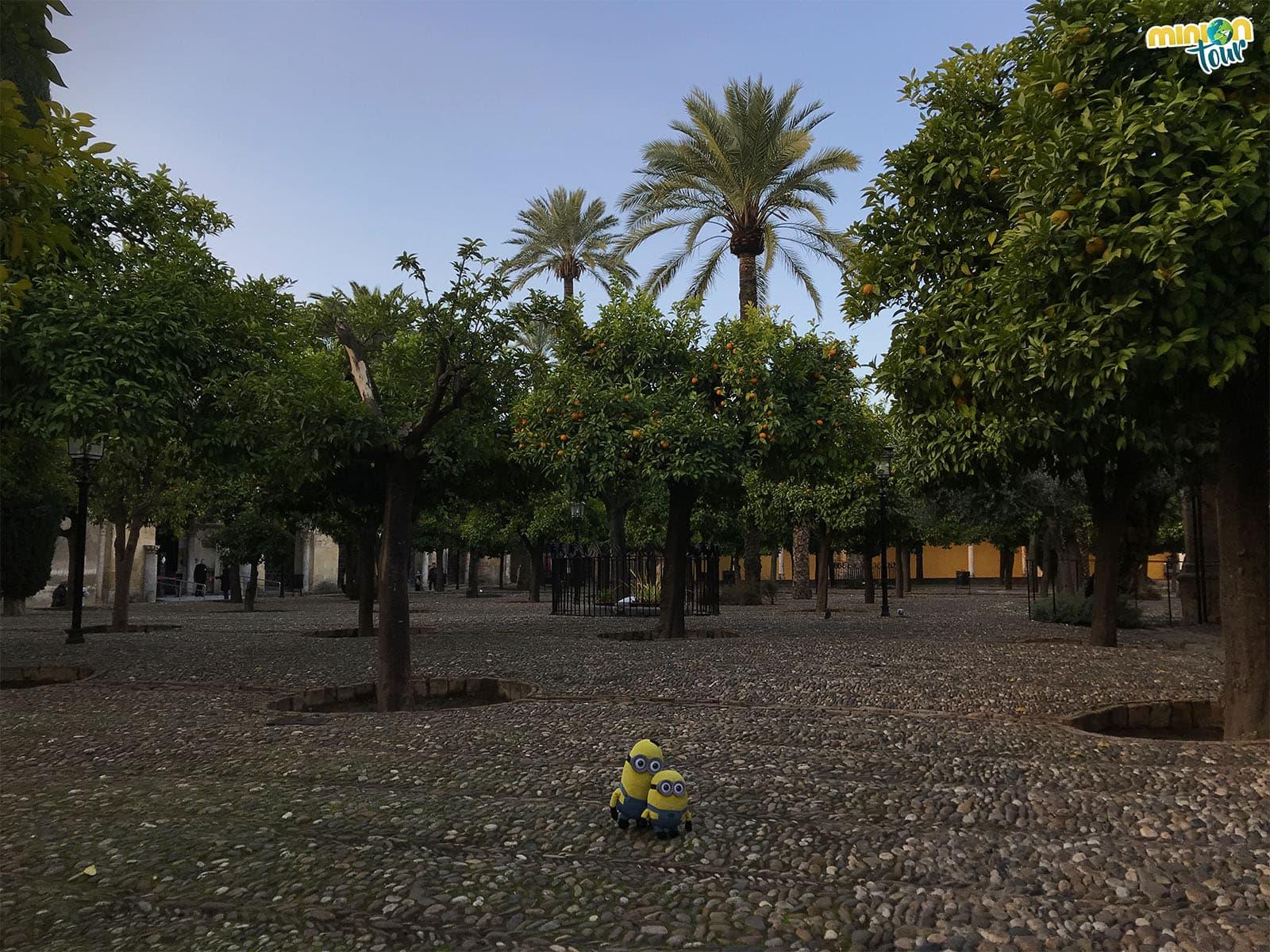 Minions paseando por el Patio de los Naranjos en Córdoba