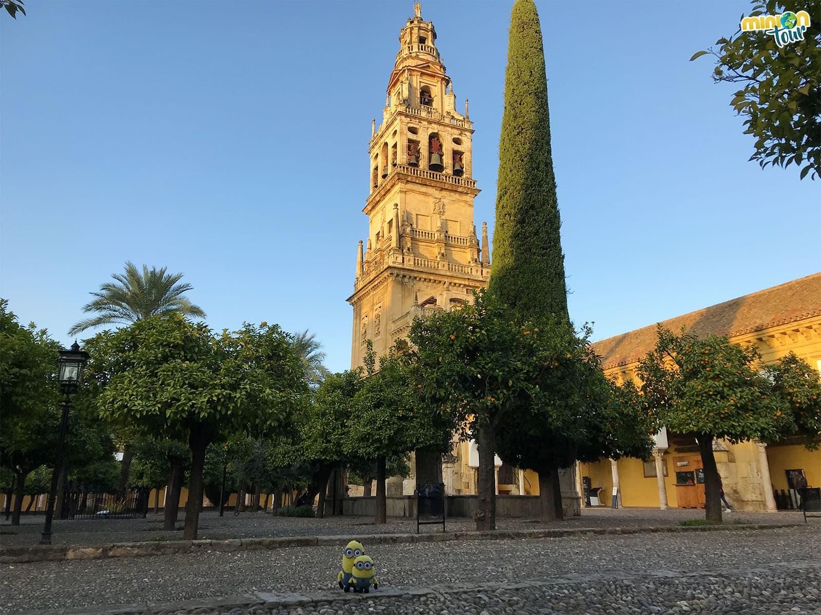 Los Minions en el Patio de los Naranjos de Córdoba