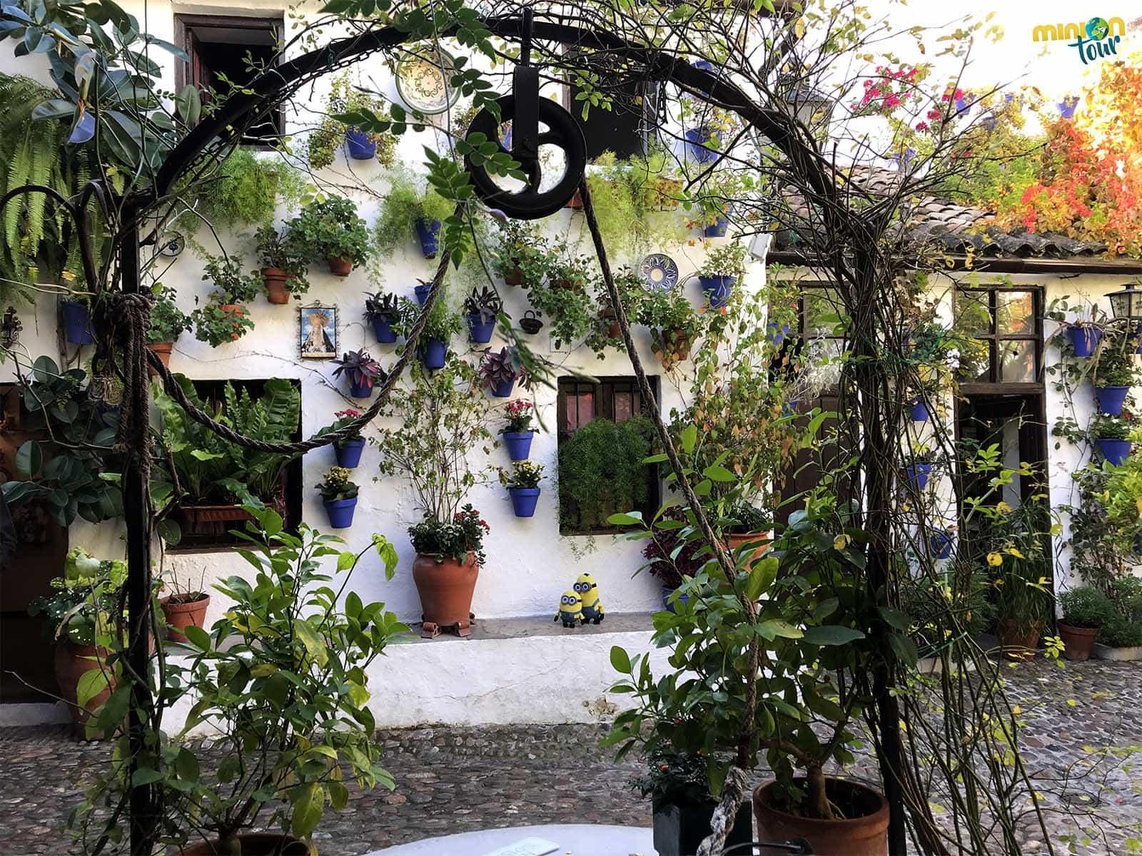 En Córdoba no te puedes perder visitar sus patios