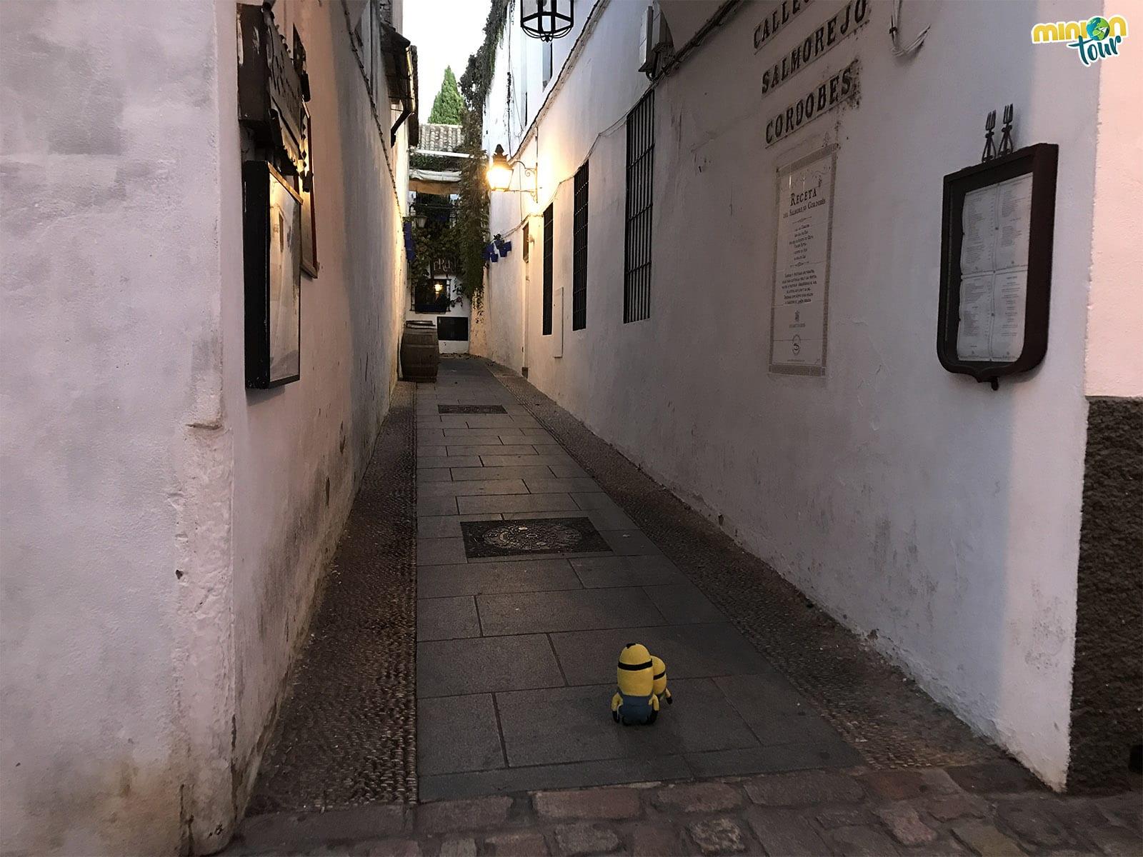 2 Minions en la calle del salmorejo cordobés