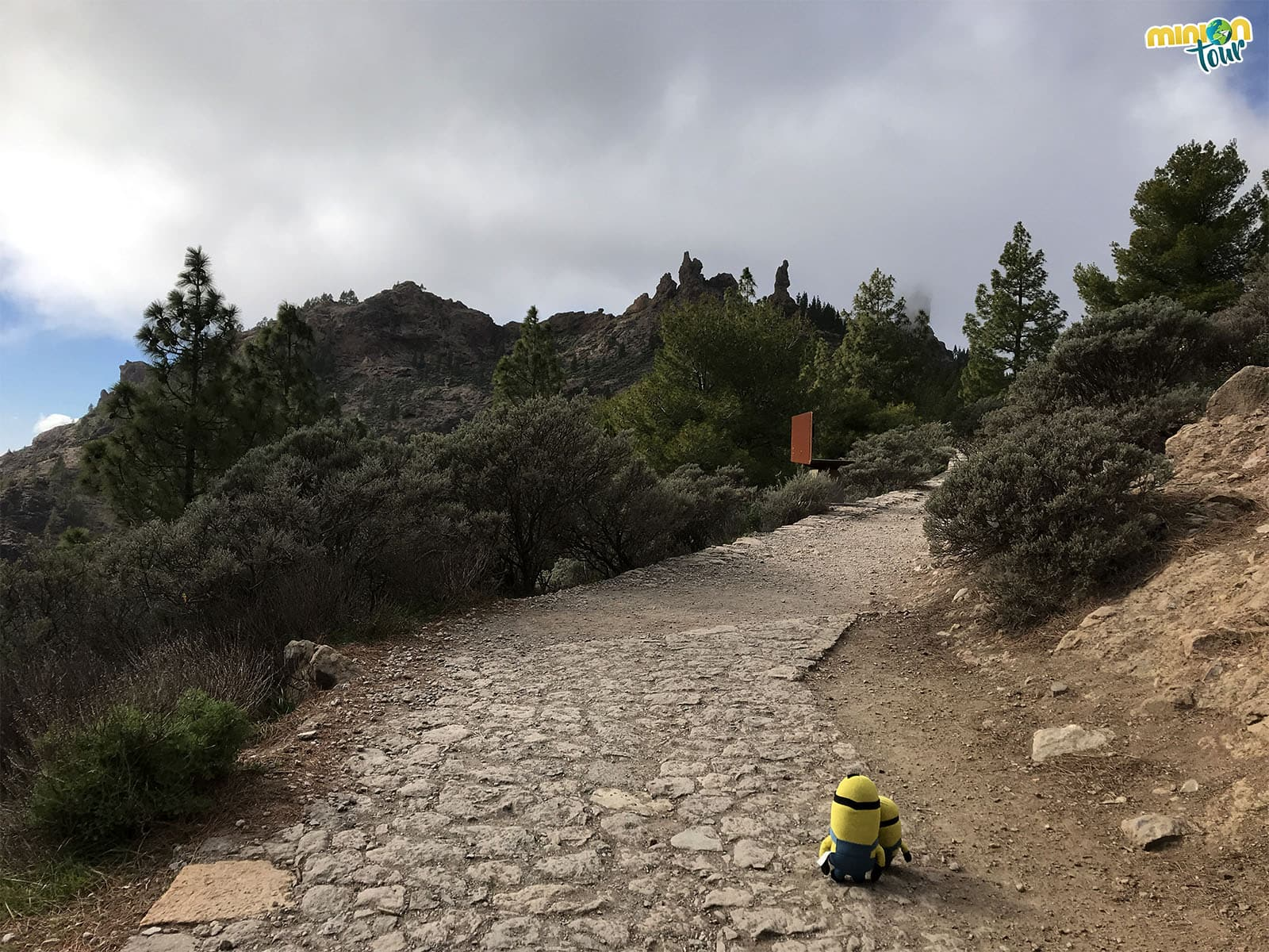 Ruta hacia el Roque Nublo, una de las cosas que ver en Tejeda