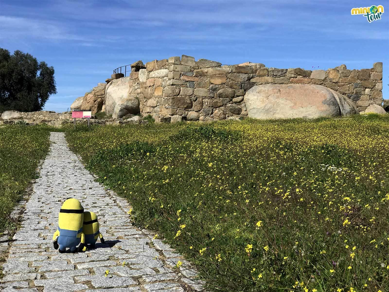 Los Minions de visita al Yacimiento Arqueológico de Hijovejo
