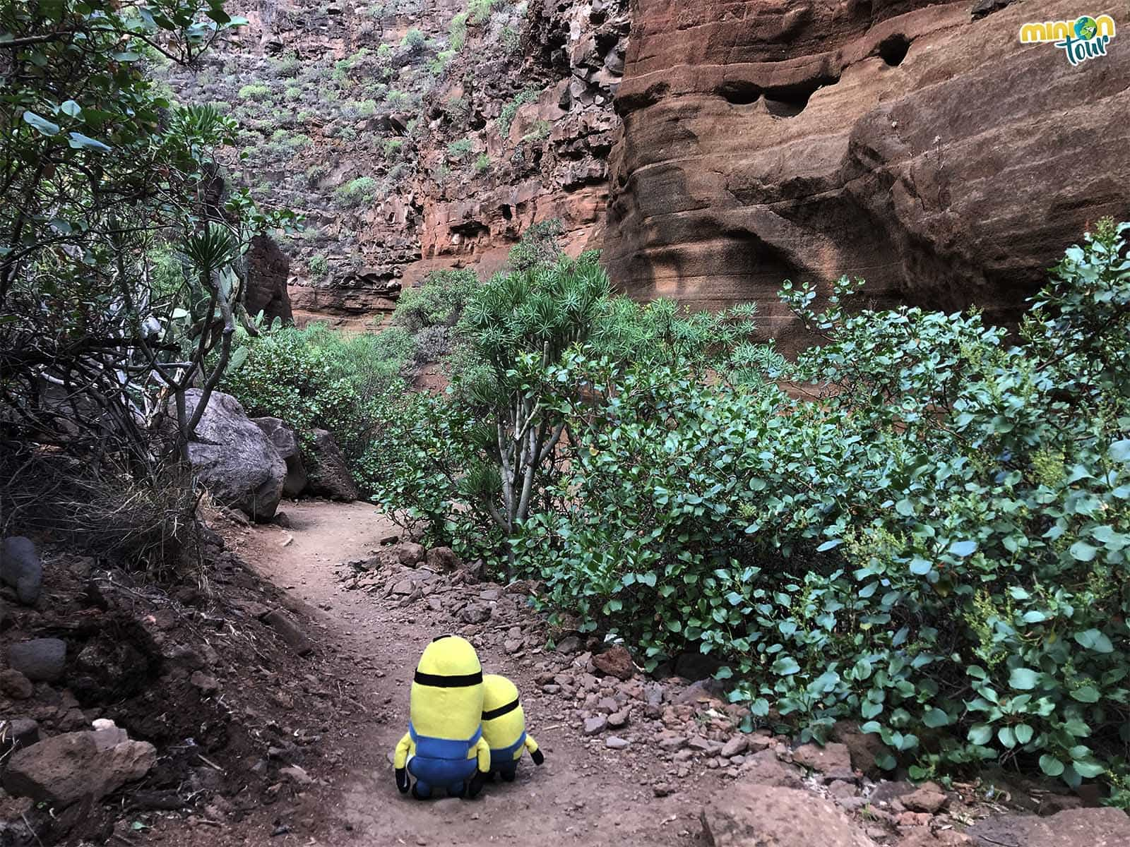 El Antelope Canyon de Gran Canaria es el Barranco de Barafonso