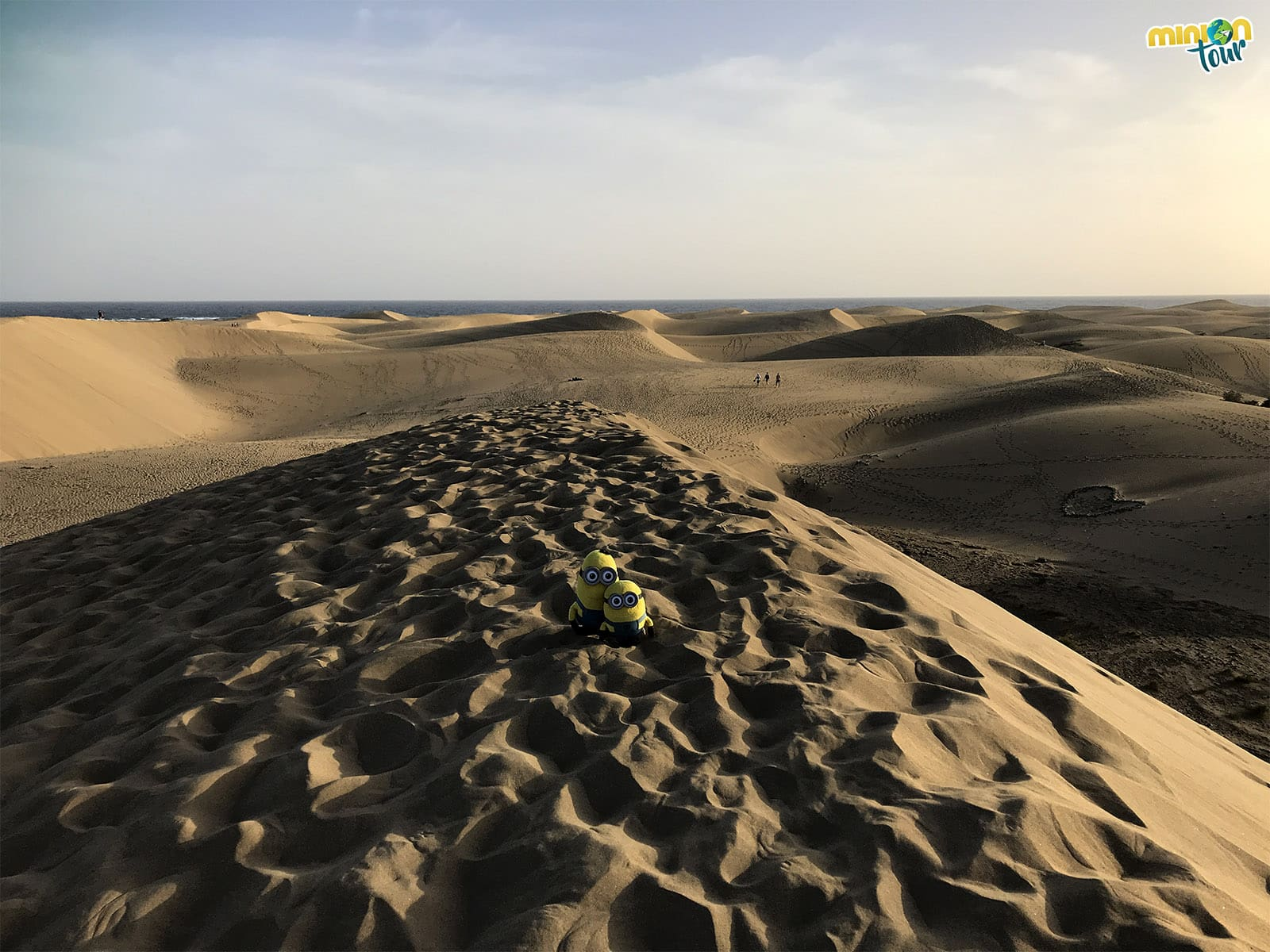 Flipamos con la Reserva Natural Especial de las Dunas de Maspalomas en Gran Canaria