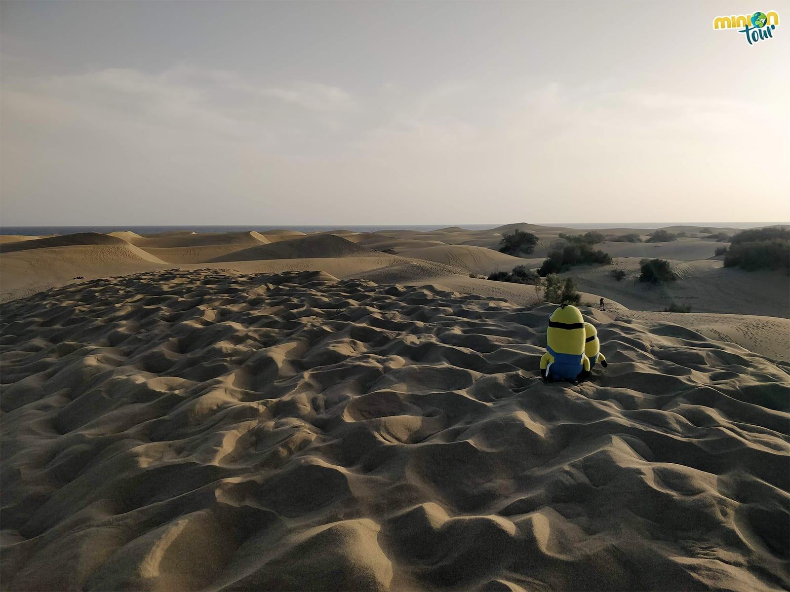 Las Dunas de Maspalomas en Gran Canaria