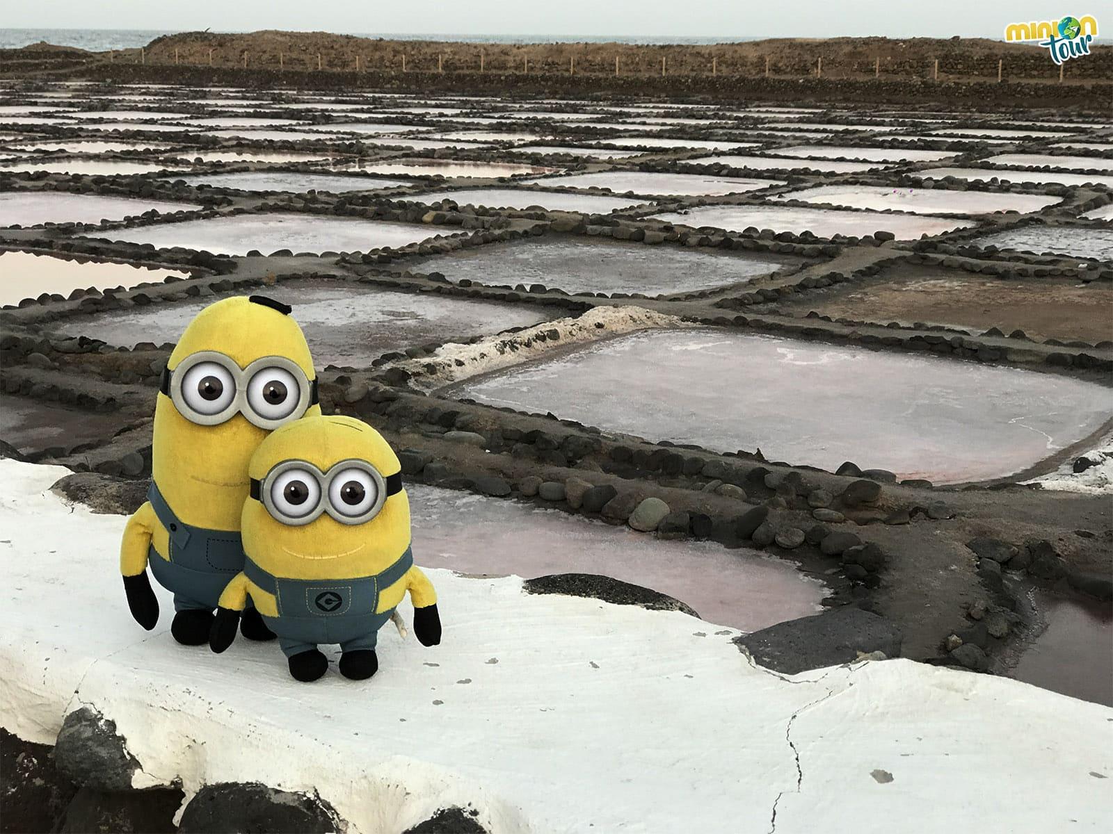 Las Salinas de Tenefé en Gran Canaria