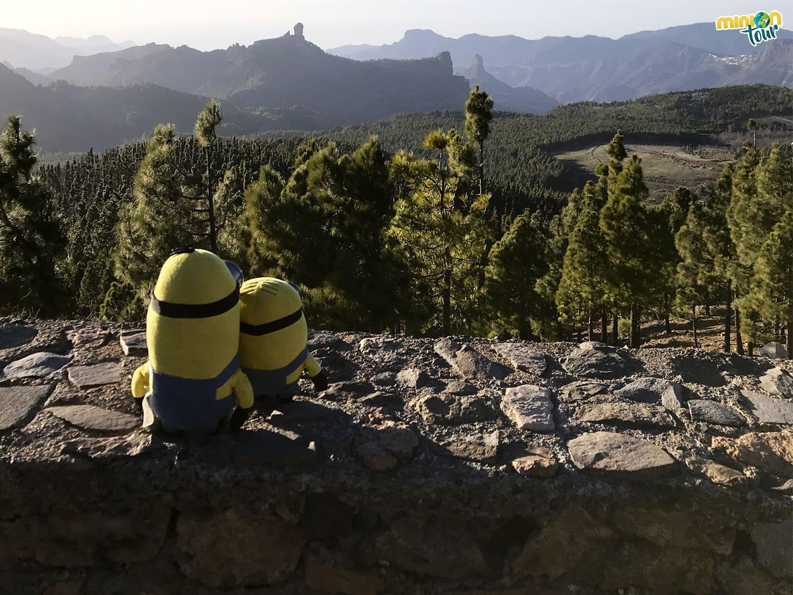 Los 20 mejores miradores que ver en Gran Canaria en coche