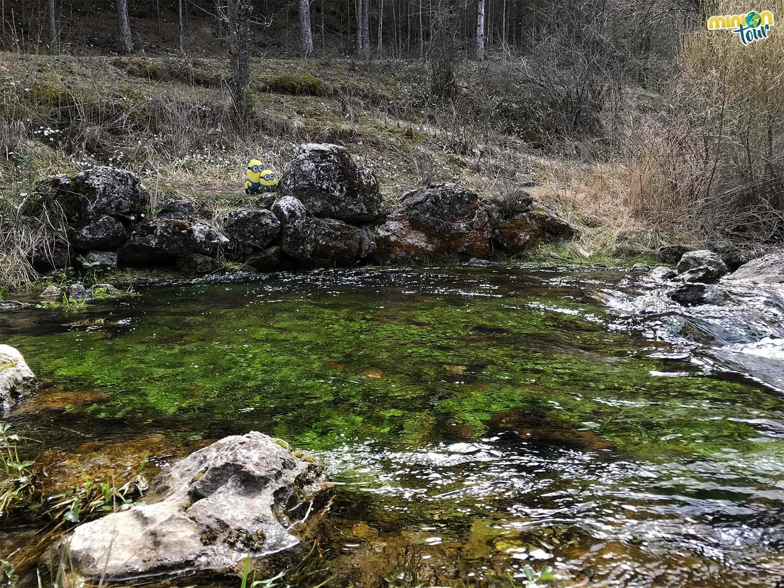 El río Cabriel sale del suelo