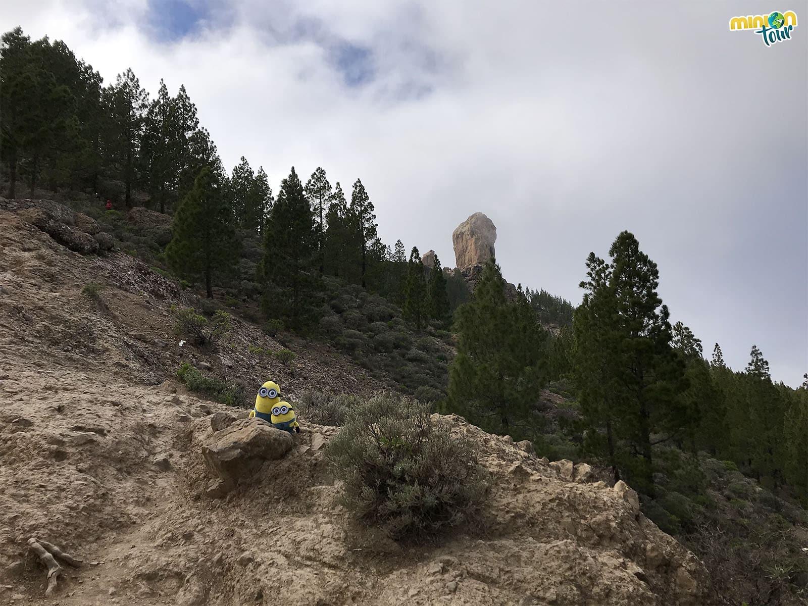 Ruta al Roque Nublo, un espectáculo único en Gran Canaria