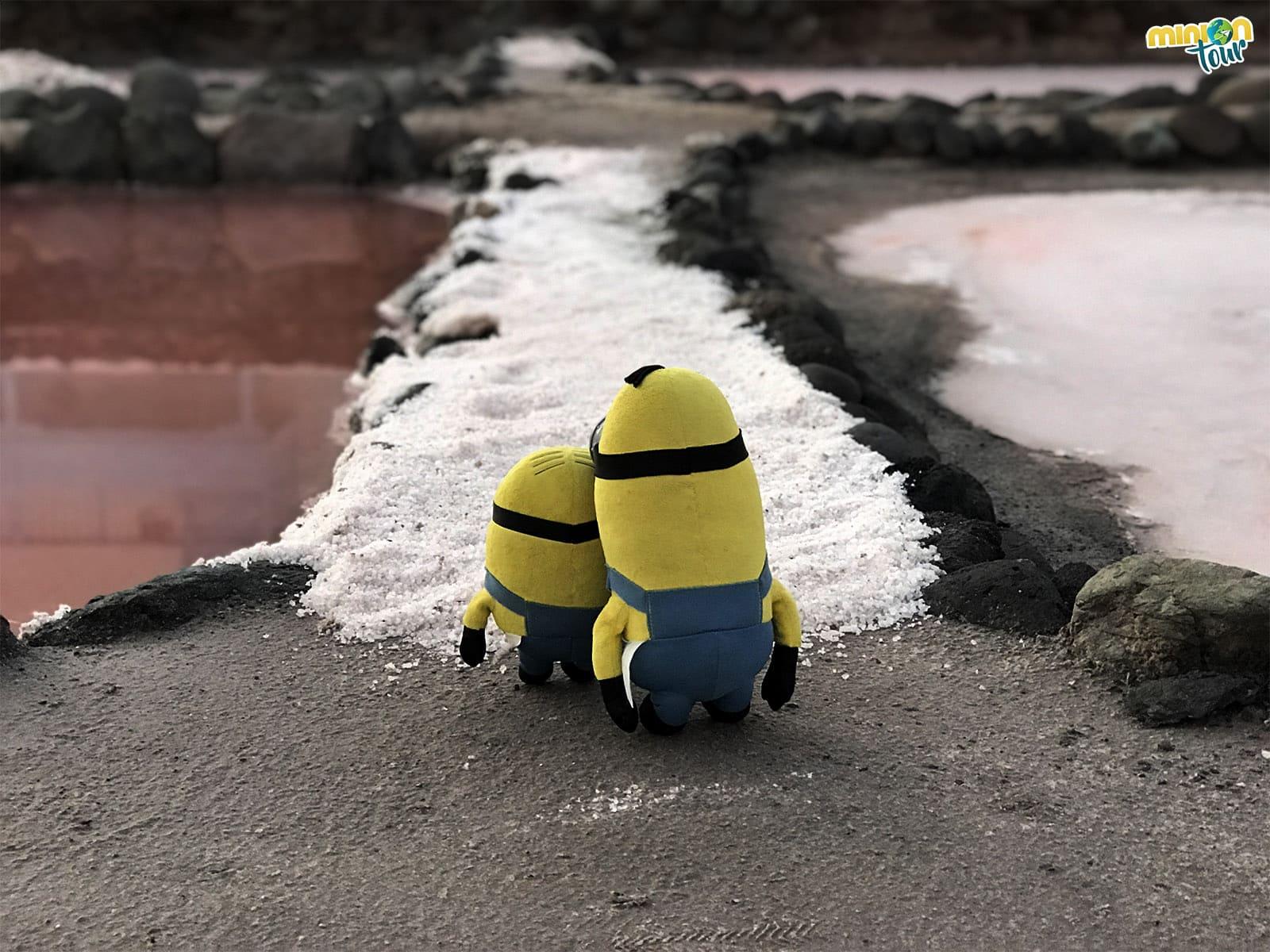 Un camino de sal