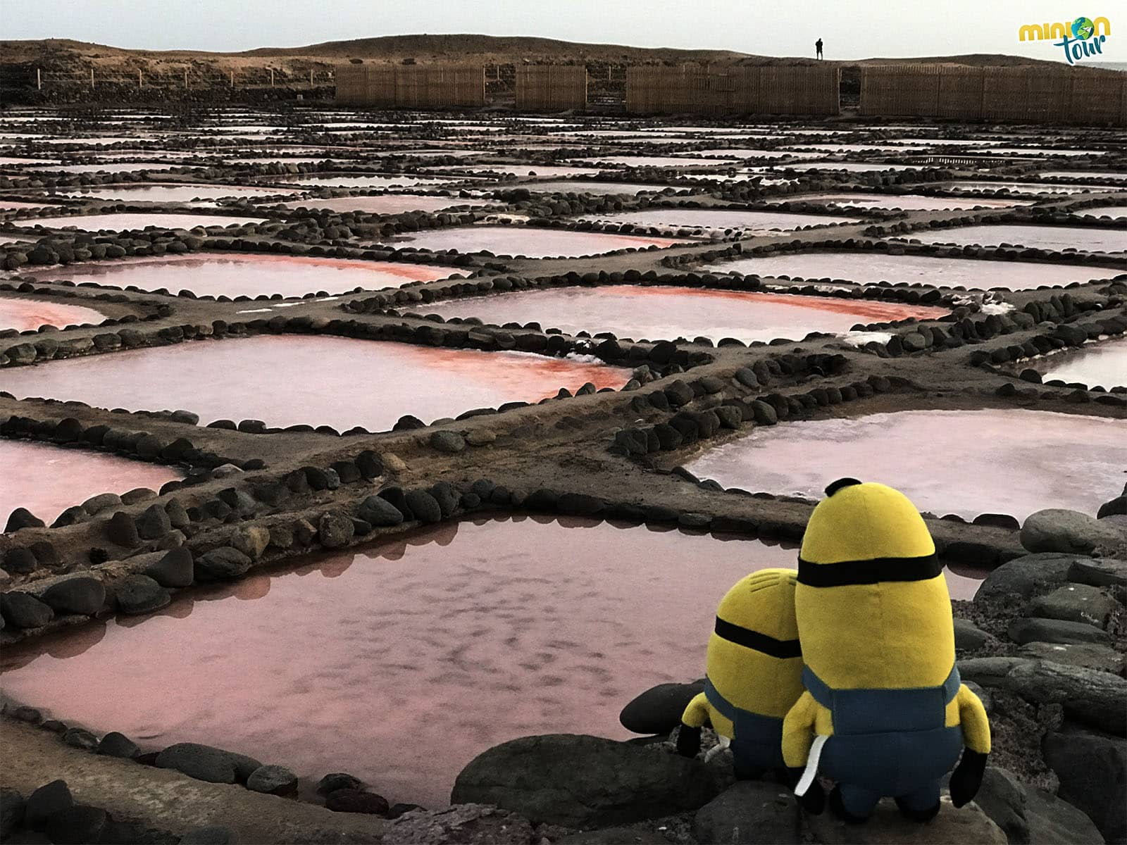 Las diferentes tonalidades rosa de las Salinas de Tenefé. Guía de Viaje a Gran Canaria
