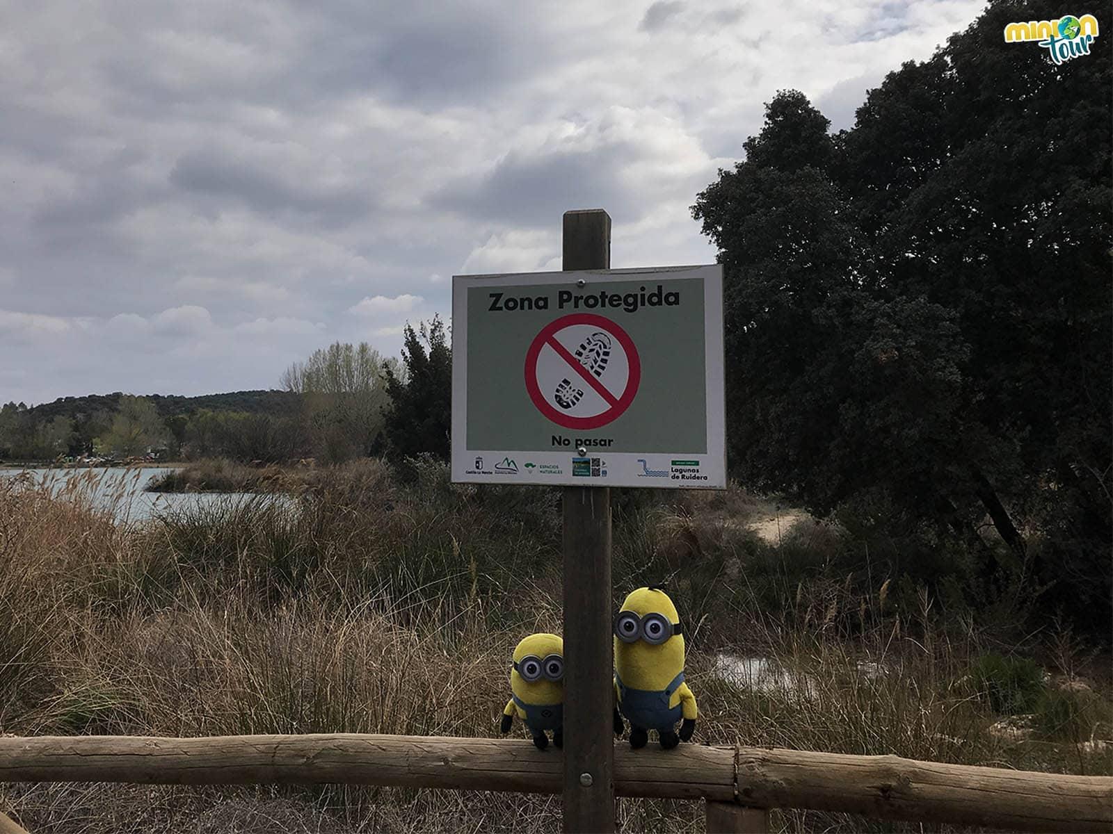 Zona protegida de las lagunas