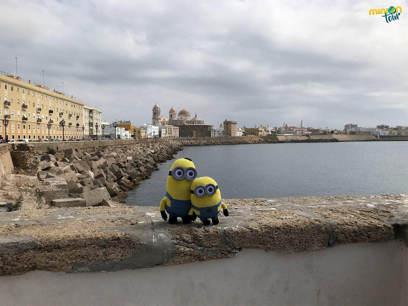El Paseo Marítimo es uno de los imprescindibles que ver en Cádiz