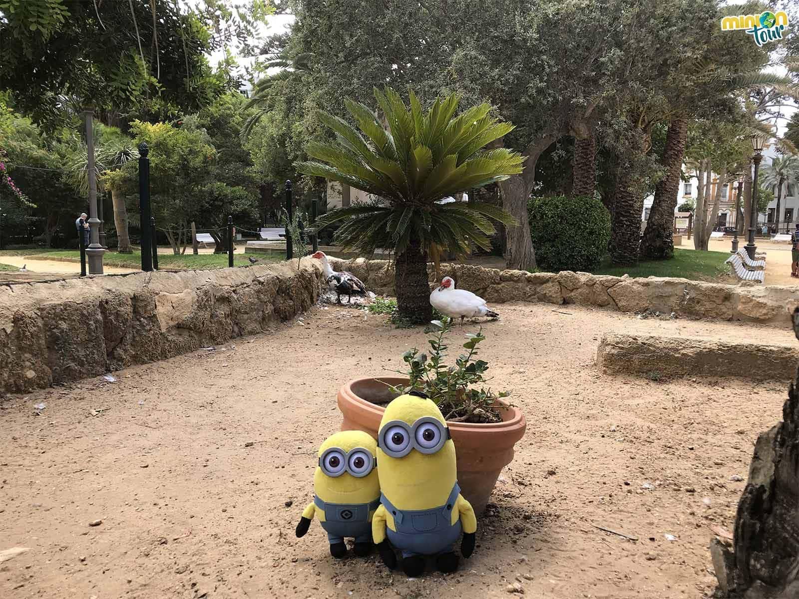 El Parque Genovés, una de las cosas que ver en Cádiz