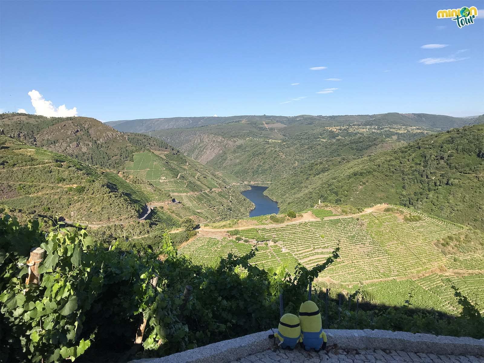 Flipando con las vistas de la Ribeira Sacra