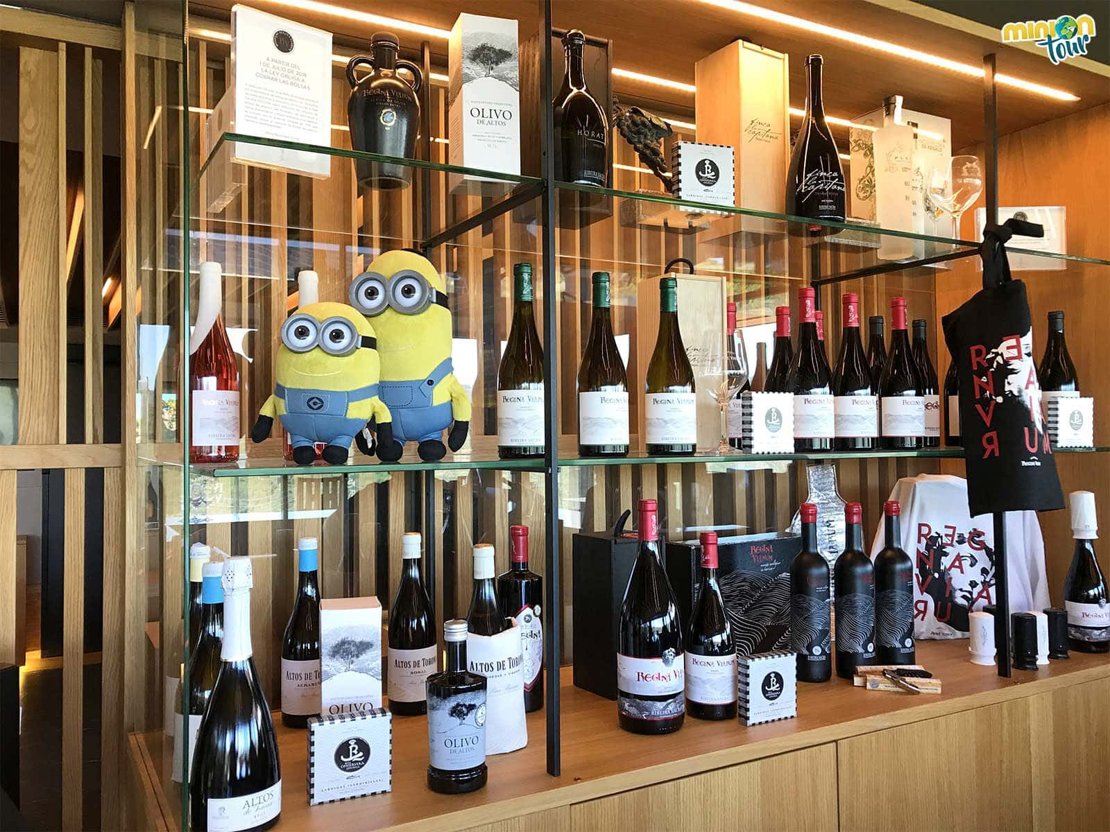 Comprando vinos en las Bodegas Regina Viarum