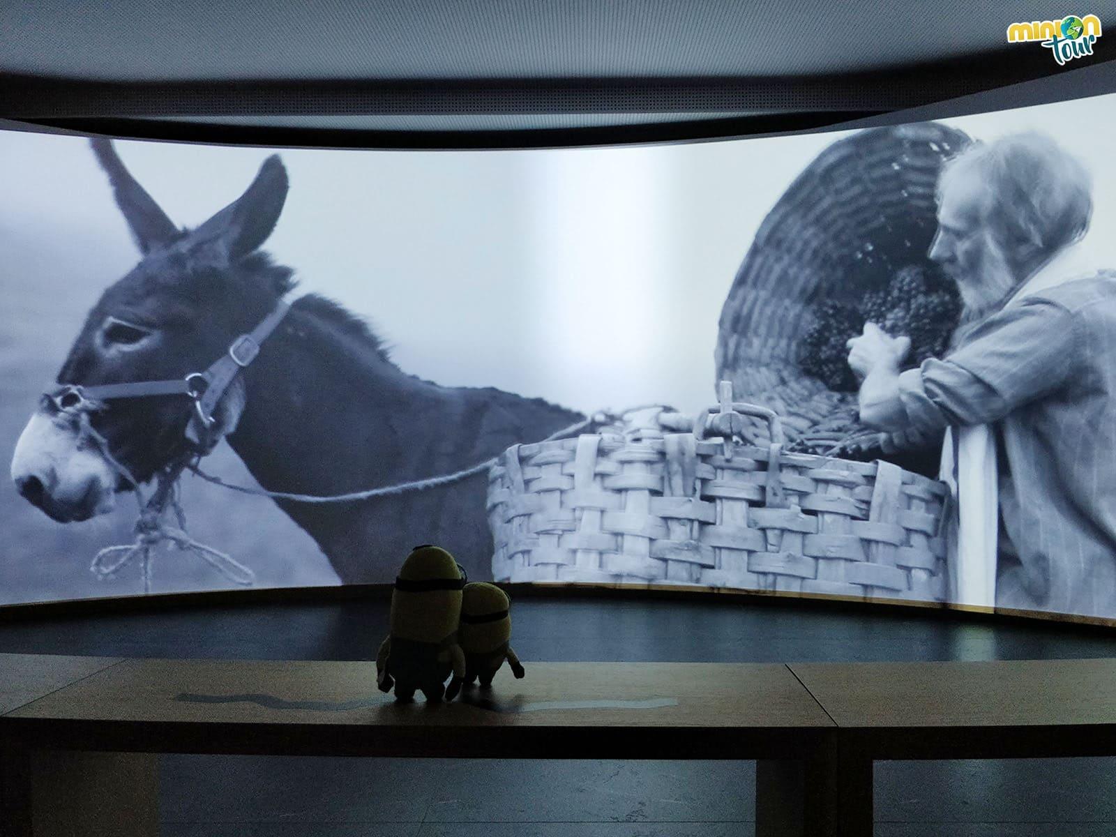 Viendo con atención el audiovisual de la Ribeira Sacra