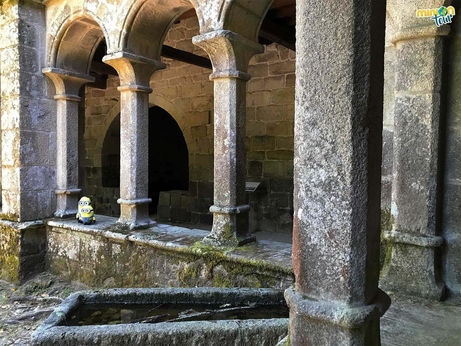 De visita por el claustro del Monasterio de Santa Cristina de Ribas de Sil