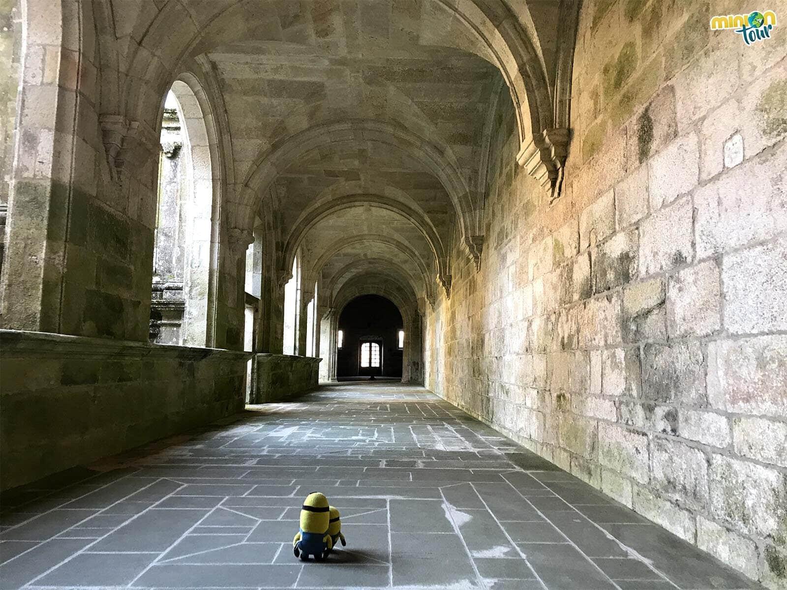 Recorriendo el Claustro de Medallones del Monasterio de Oseira en Cea