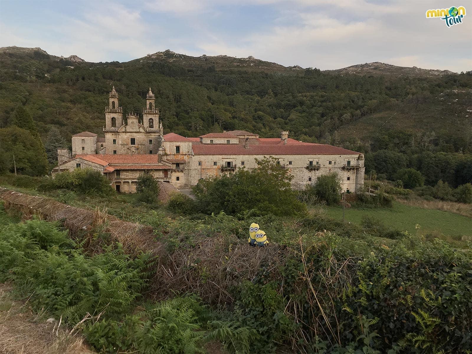 Buscando pulpo en el Monasterio de Oseira