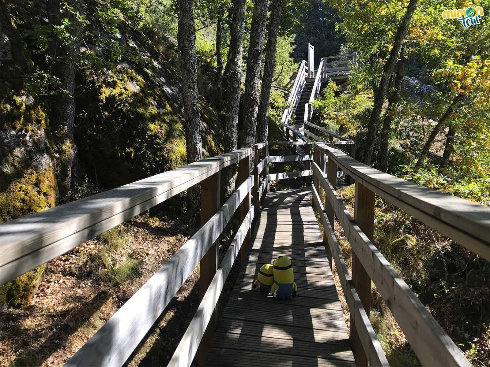 Por las pasarelas de la ruta de A Cántara da Moura