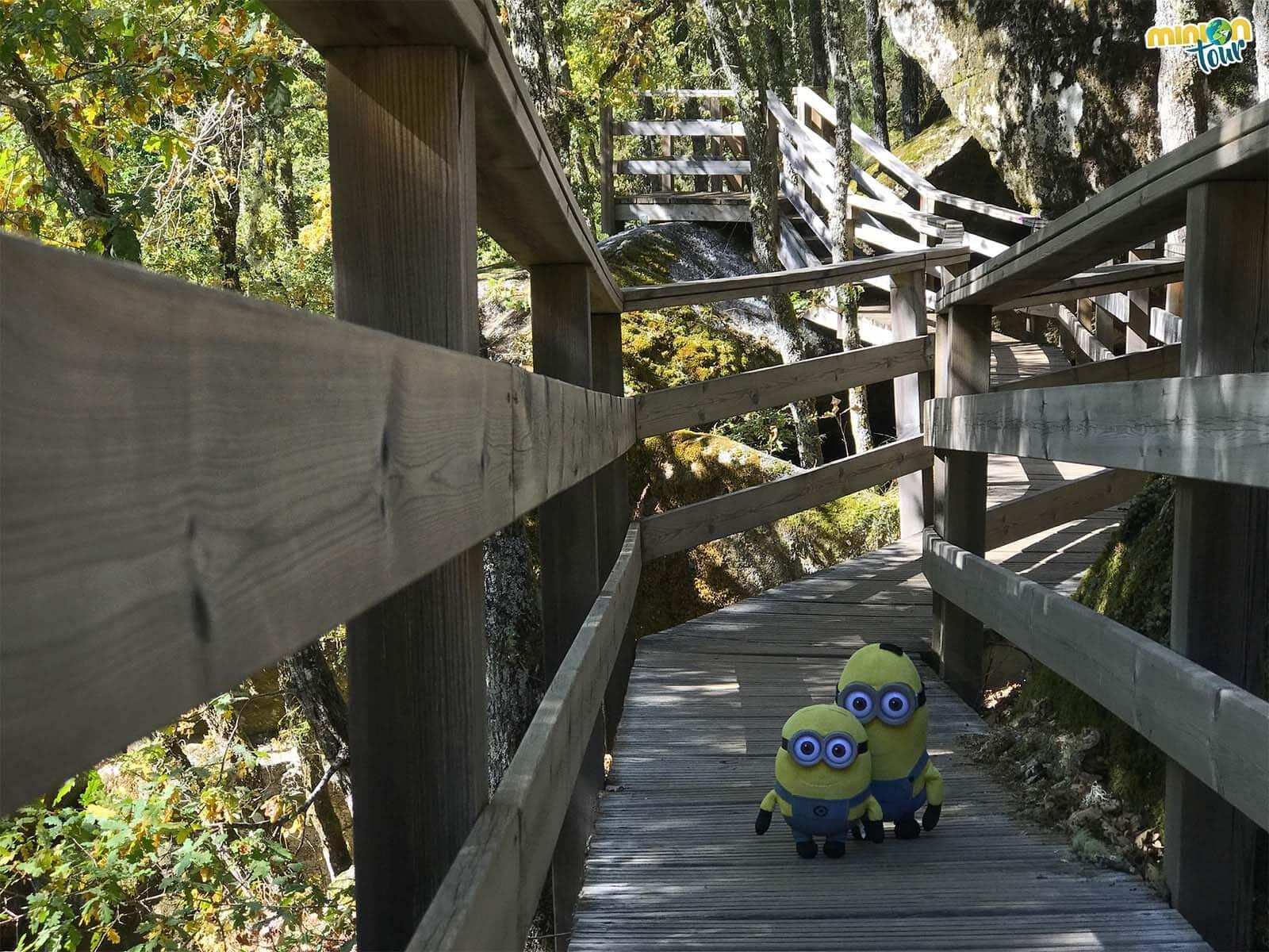 Cruzando por las pasarelas de la ruta de A Cántara da Moura