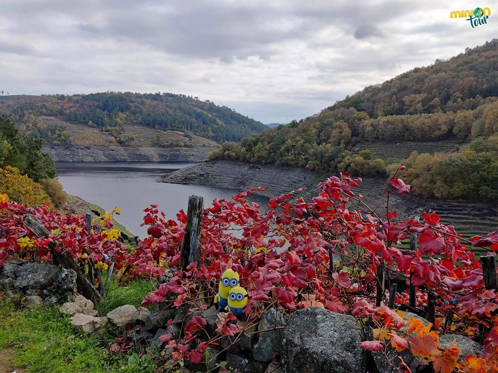 Posando con los viñedos de la Ribeira Sacra en nuestra ruta hacia Castro Candaz