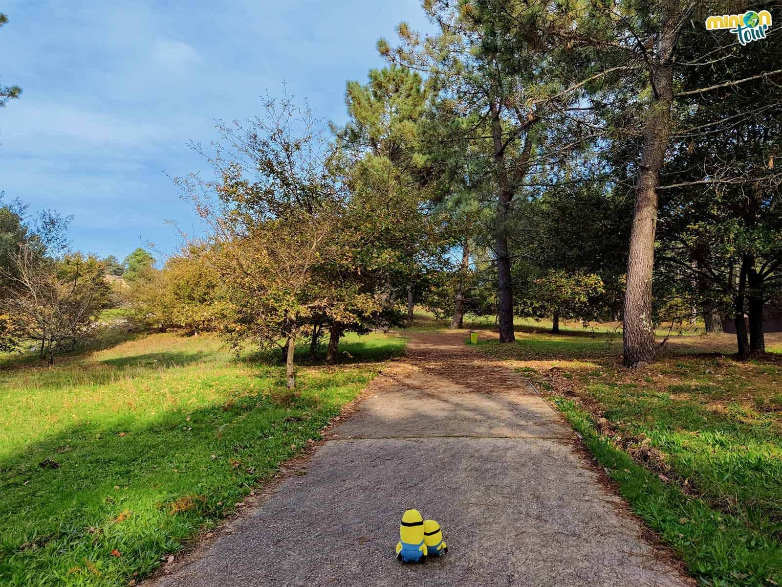 Minions paseando por el Parque Arqueológico del Arte Rupestre de Campo Lameiro