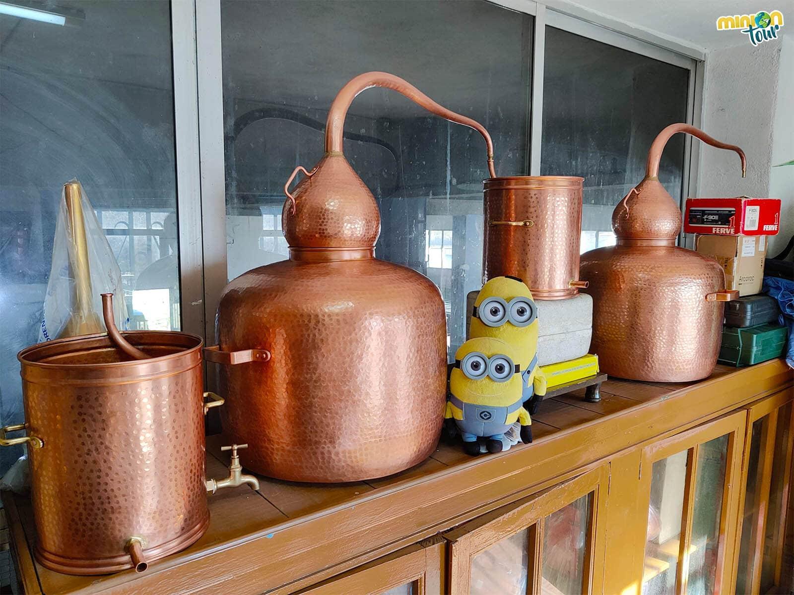 Minions en el Taller de Manolete en Os Peares