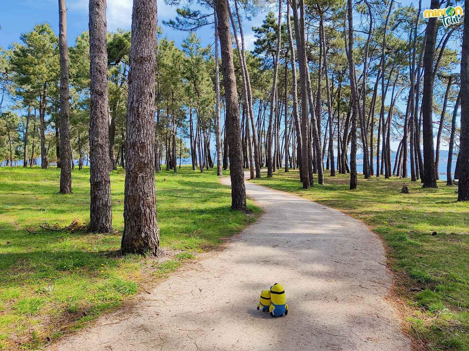 Nos vamos a conocer toda la Isla de Arosa paseando por la costa