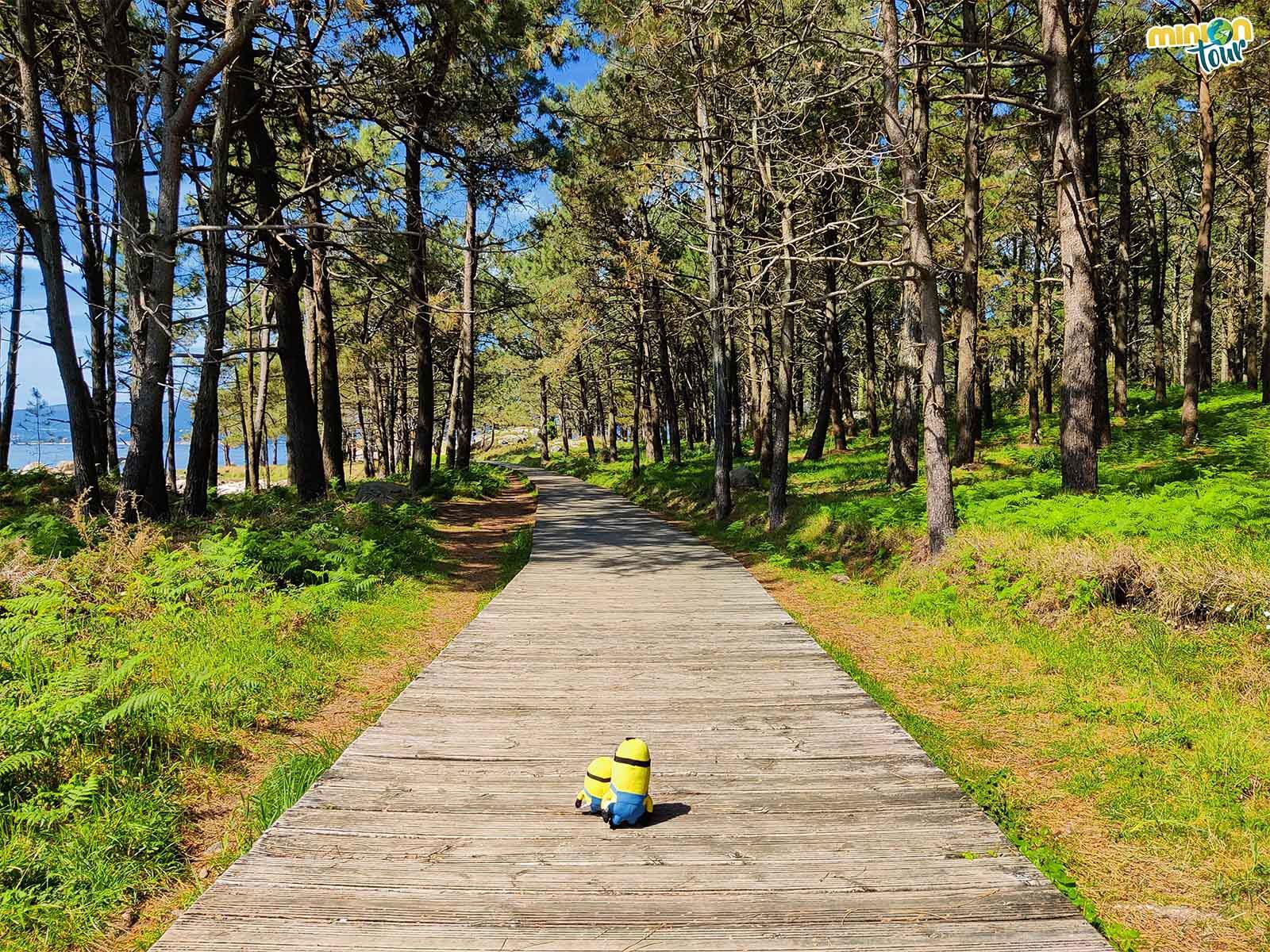 Nos encantan los paseos de la Isla de Arosa