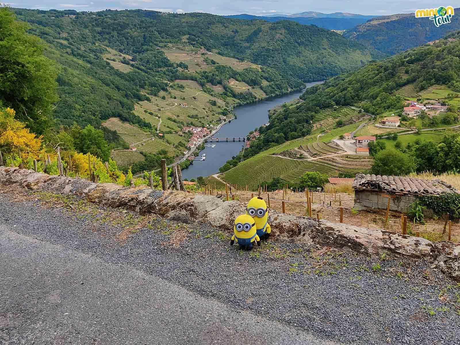Ruta por los miradores de los Cañones del Miño en la Ribeira Sacra