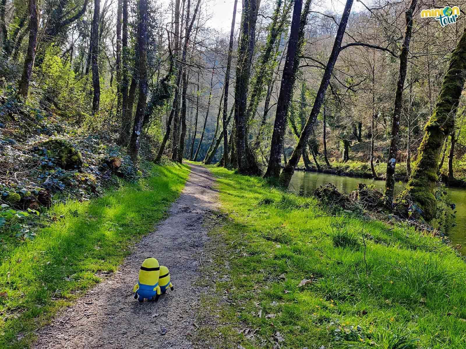 Nos encantan las rutas y esta es una de las que puedes hacer en Sarria