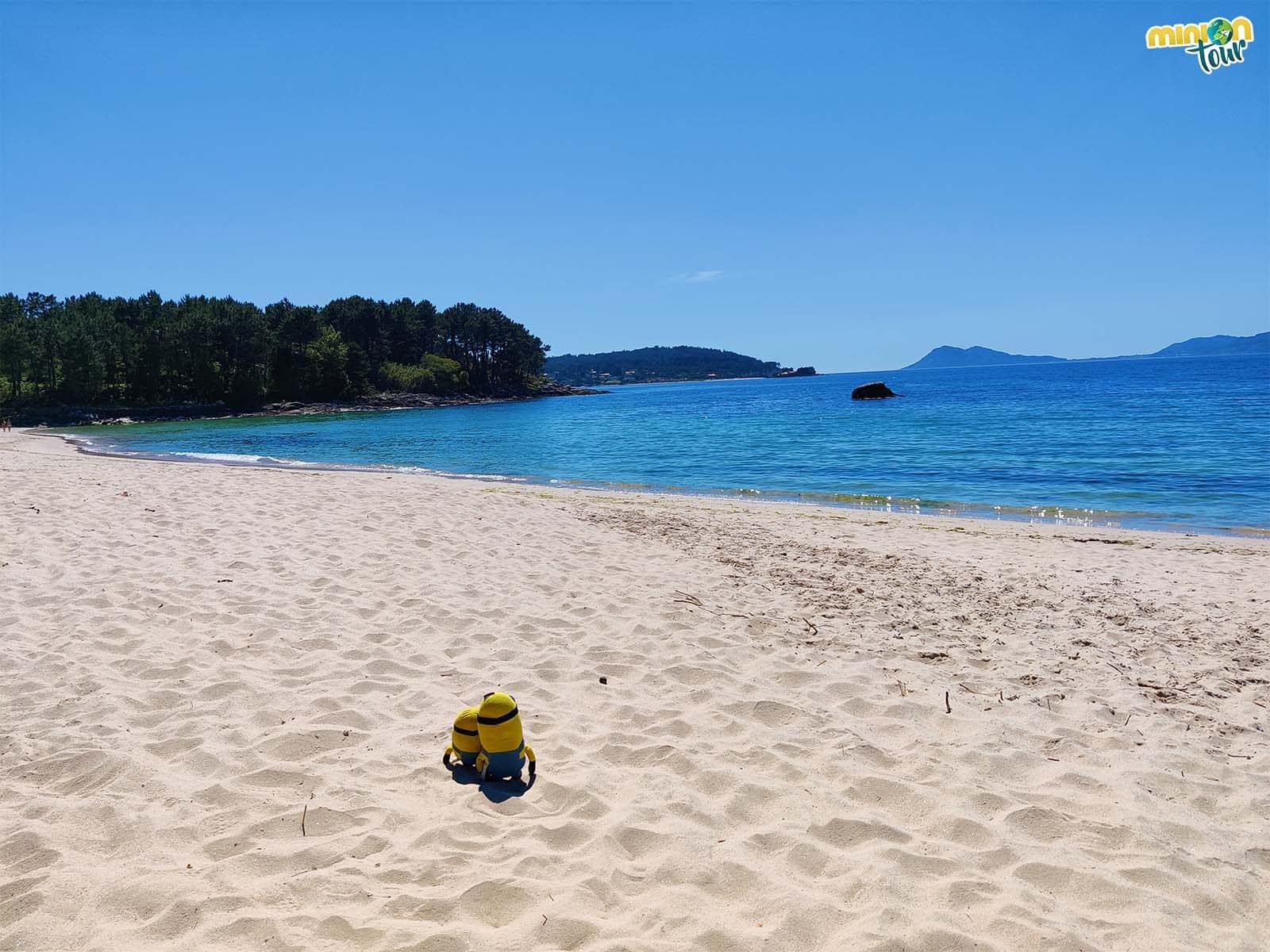 Una playa paradisíaca en la Ría da Estrela
